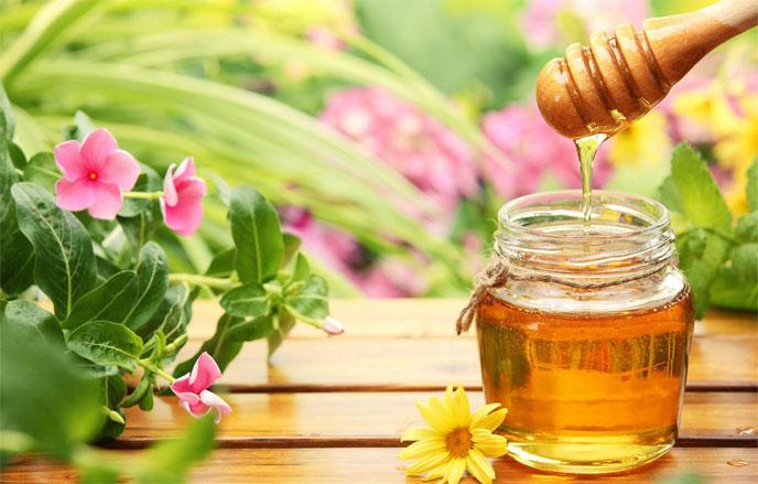 mật ong giúp chăm sóc và nuôi dưỡng da khô