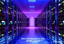 web-hosting-noi-luu-chu-du-lieu-website
